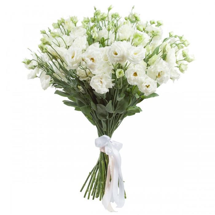 Эустома цветок букет цена, цветов